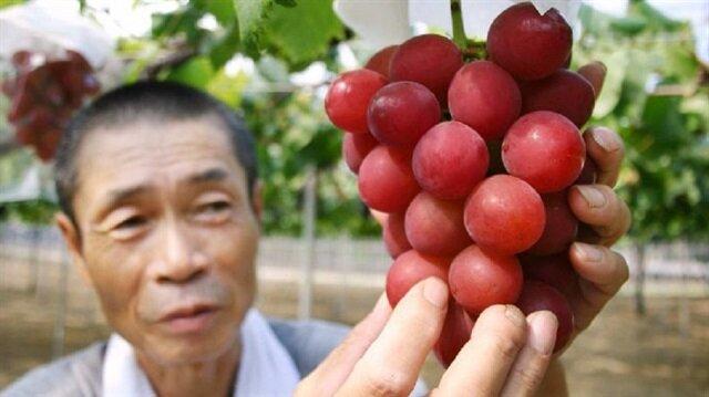 Japonya'da bir salkım üzüm 32 bin liraya satıldı