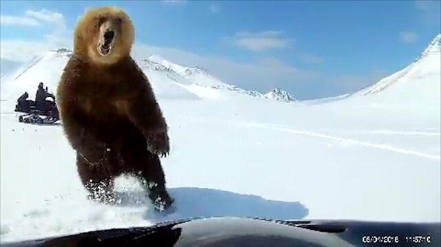 Adam ayının pençesinden saliselerle kurtuluyor