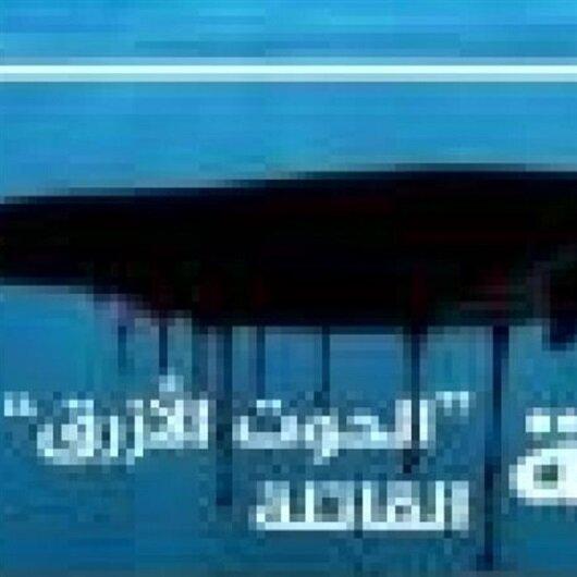 """منع """"الحوت الأزرق"""" في مصر بأمر النائب العام"""