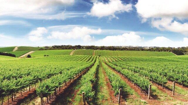 2 milyon hektar atıl arazi üretime