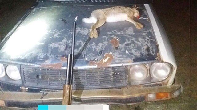 Burdur'da 'far avı' yapan kaçak avcılara 3 bin 551 lira ceza uygulandı