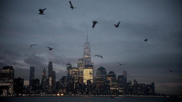 Milyonlarca kuş gökdelenlere çarpıp ölüyor