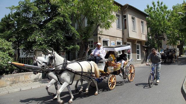 Atlara yapılan zulüm meclis tarafından incelenmeye alınıyor