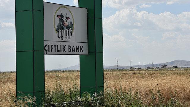 Konya'da 'Çiftlik Bank'ın tabelası ve temeli kaldı