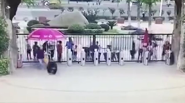 Hayvanat bahçesinden kaçan şempanze insanlara saldırdı