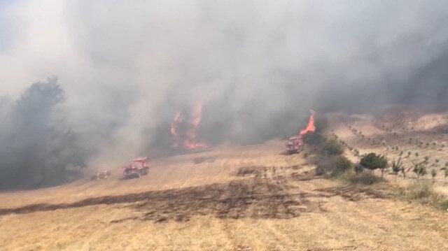 Balıkesirdeki orman yangını böyle görüntülendi