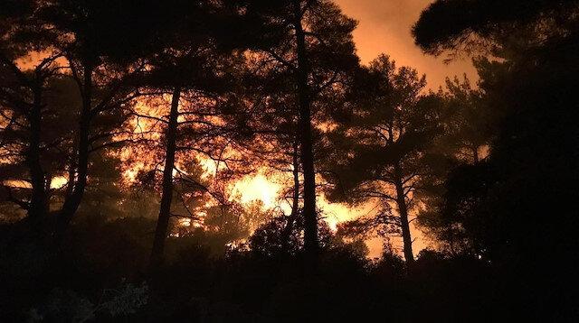 Çanakkale'deki yangın hakkında ne biliyoruz?