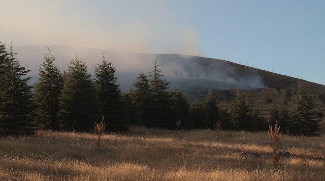 Elazığ'daki orman yangını kontrol altına alındı.