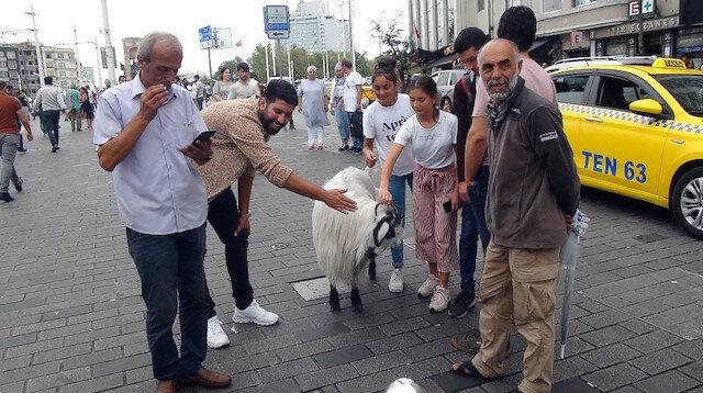 Keçiyle Taksim'e çıktı, vatandaşlar şaşkına döndü