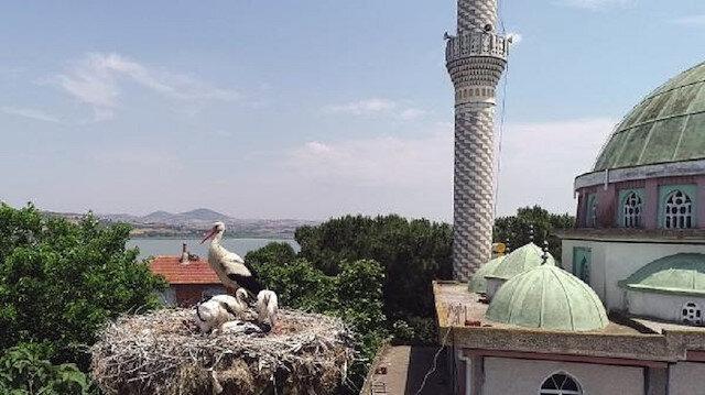 Karacabey'deki 'Avrupa Leylek Köyü'nde göç başladı