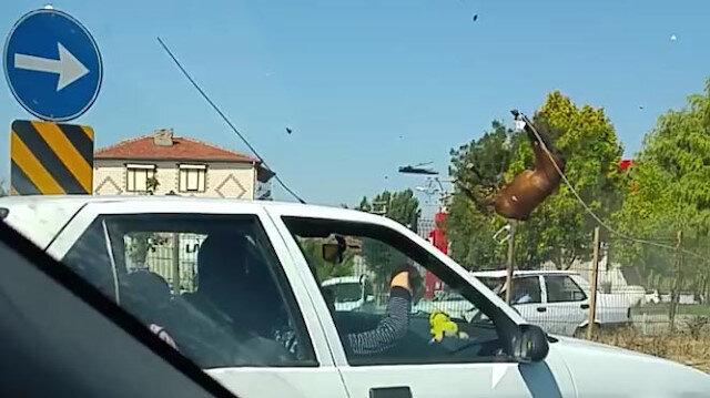Eskişehir'de yola fırlayan atlara otomobil çarptı