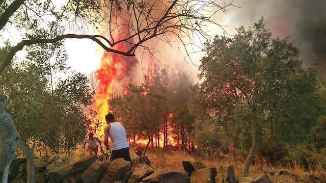 Ormanları PKK yakıyor
