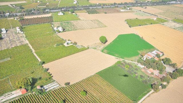 Yüzde 50 hibeli tohum desteği ekili alanları arttırdı