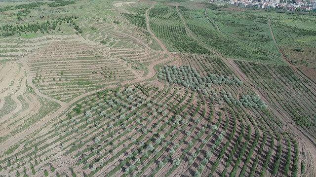TOKİ: AOÇ arazilerinin kiralanması ile ilgimiz yok