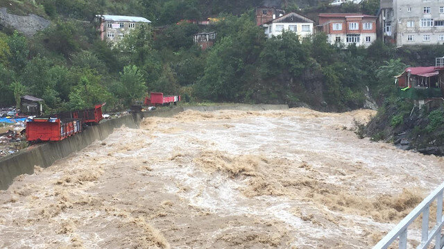 Artvin'de şiddetli yağış nedeniyle dereler taştı, yollar kapandı