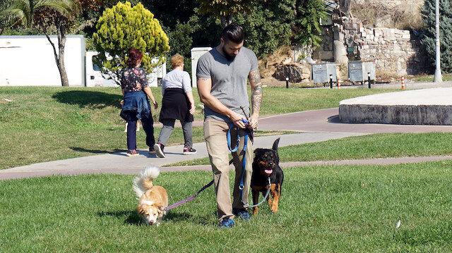 Köpek gezdirerek ayda 6 bin TL kazanıyorlar