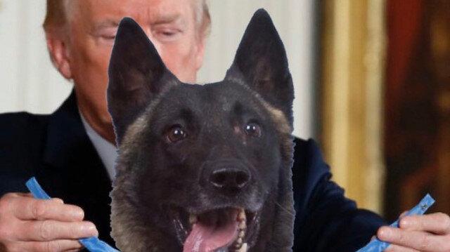 ABD Başkanı Trump askerin yerine köpeği montajladı