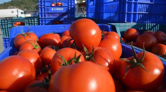 Kasım ayının zam şampiyonu domates, fiyatı en fazla düşen ürün ise portakal