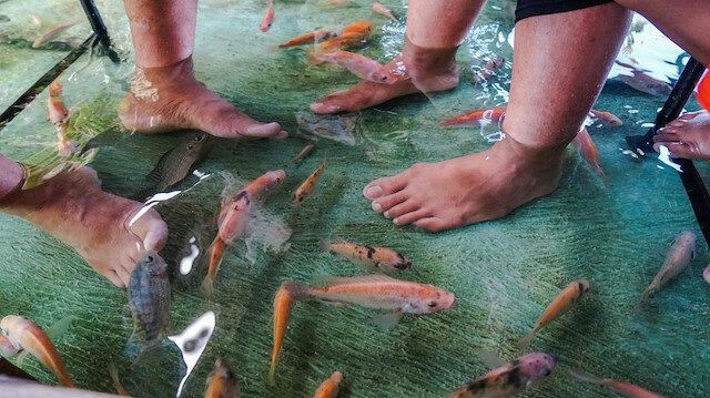 Endonezyada zemini balıklarla dolu restoran büyük rağbet görüyor