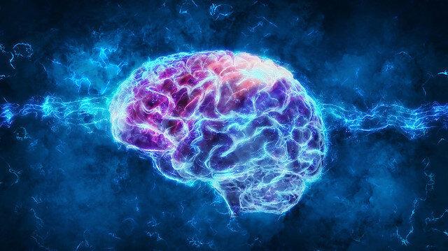 Alman bilim adamlarından çarpıcı açıklama: Monotonluk beyni küçültüyor