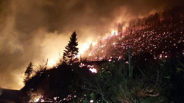 Karadeniz alevler içinde: 69 farklı noktada yangın çıktı