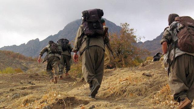 Terör örgütü PKK'da çözülme sürüyor: 5 PKK'lı terörist teslim oldu