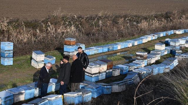 Mersin'de 15 bin arı kovanı sular altında kaldı: Bölgede inceleme yapıldı