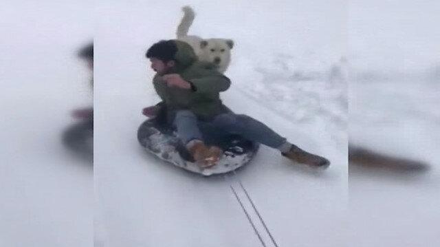 Eğlenmek isterken peşine köpek takıldı