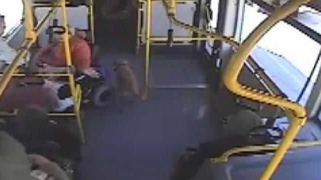 Üşüyen köpek otobüse sığındı