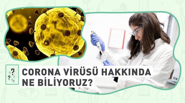 Corona virüsü hakkında ne biliyoruz?