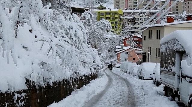 Artvin'e yılın ilk karı düştü: Muhteşem kar manzaraları oluştu