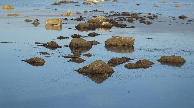 Denizin çekilmesi ile 2 bin 500 yıllık Adramytteion Limanı ortaya çıktı