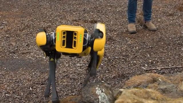 Boston Dynamics'in robot köpeği ünlü tasarımcının zorlu testinden geçiyor