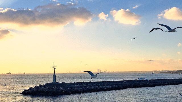 Çoşkun ve öngörülmez, İstanbul