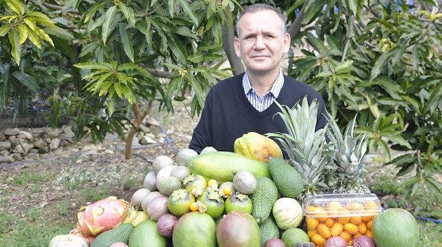 Tropikal meyveler yok satıyor: Yeter ki çiftçi üretsin