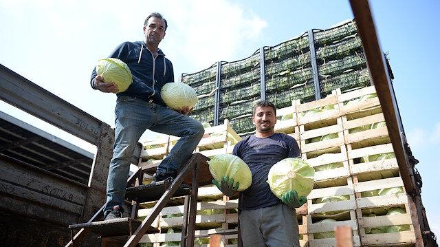 Koronavirüs ihracatı azalttı, sebze ve meyvelerin fiyatı yüzde 90 düştü: Hale gelsinler, kasa kasa alsınlar