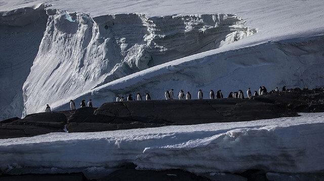 Dünyada koronavirüsün görülmediği tek kıta kaldı: Antarktika