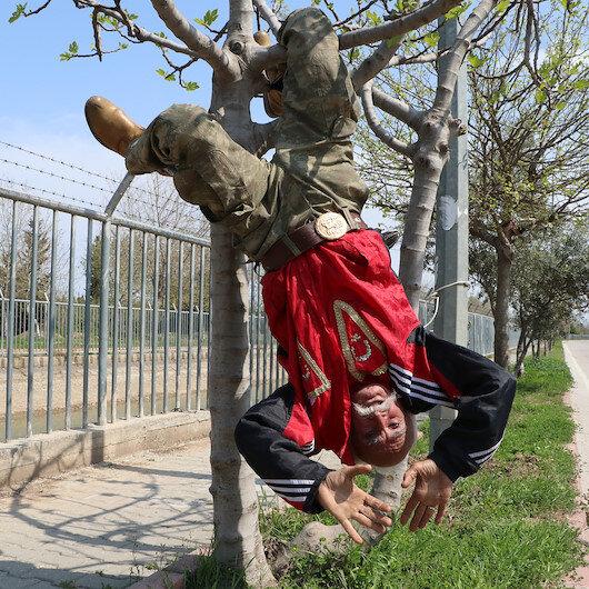 66lık İbrahim dede ağaca baş aşağı asılarak spor yapıyor