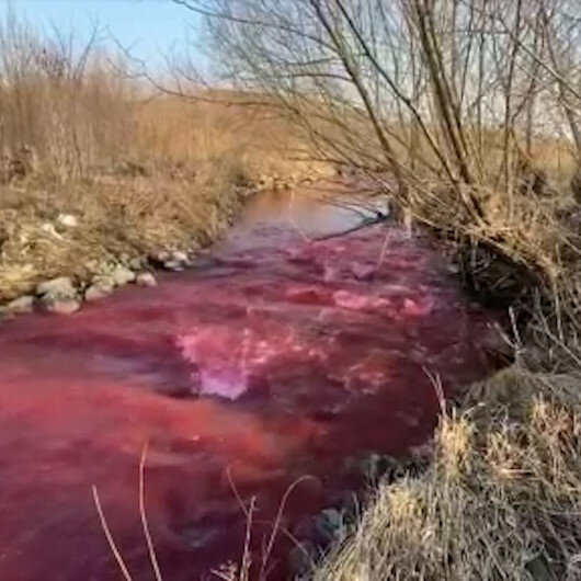 Nehir kırmızıya döndü