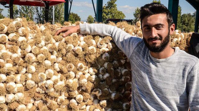 Koronavirüs sarımsağın fiyatını yüzde yüz artırdı