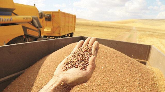 Geleneksel tarım değer kazanacak:  Tarımdan kopuş kısa sürede önlenmeli