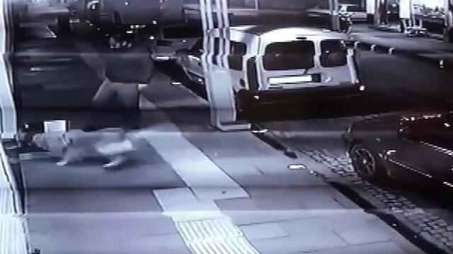 Vicdansız adam köpeğini yeni doğum yapmış kedi ve yavrularının üzerine saldı