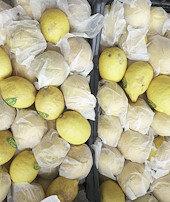 Limon ihracatıön izne bağlandı