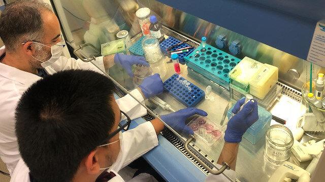 Türk bilim insanları başardı: Koronavirüse karşı başvurulan sıtma ilacı 'klorokin' sentezlendi
