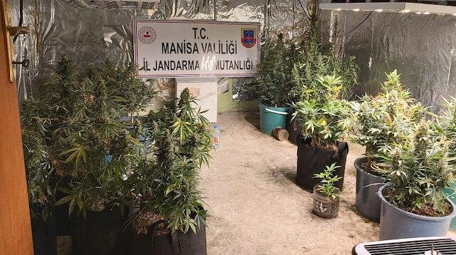 Evde yüzlerce bardakta uyuşturucu yetiştirdi