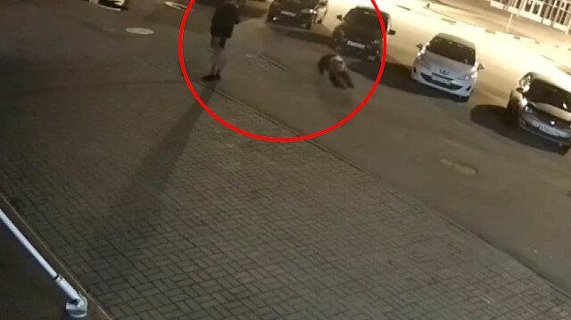 Rusya'da şehre inen ayının saldırısı kameraya yansıdı