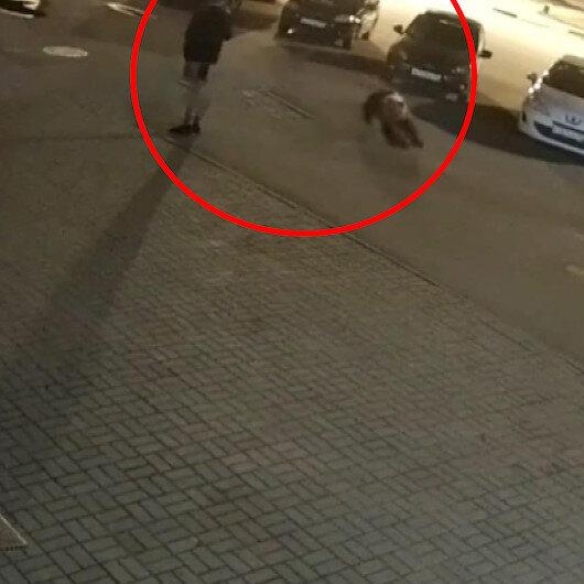 Rusyada şehre inen ayının saldırısı kameraya yansıdı