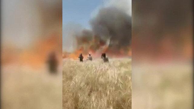Terör örgütü YPG/PKK, sivillere ait tarım arazisini yaktı