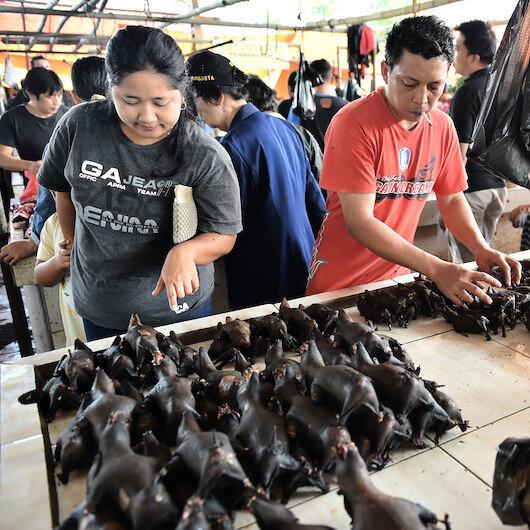 Çinliler vahşi hayvan yemekten neden vazgeçmiyor?