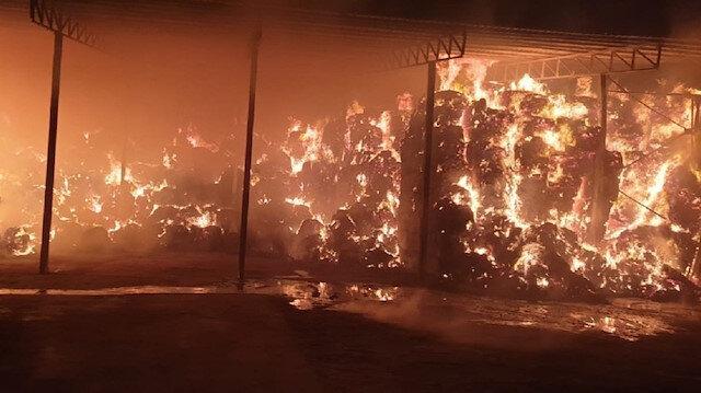 Beş bin hayvanın bulunduğu çiftlikte dev yangın